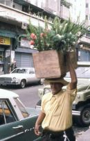 Flower Seller, Caracas